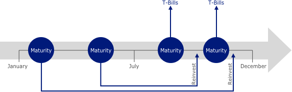 Flow chart showing maturity over time
